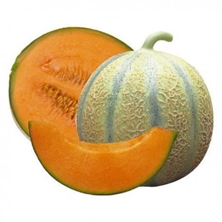 Melone Cavaillon