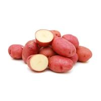 Kartoffeln rot